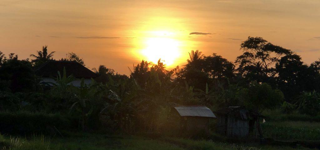 Morgenwanderung Bali 001
